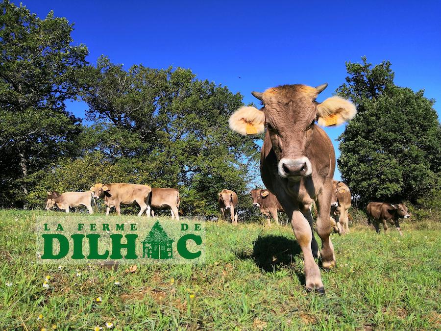 Ferme de Dilhac produits bios et glaces